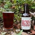 Lagunitas Brown Shugga' Photo 325