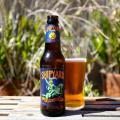 Shipyard Pumpkinhead Photo 1512